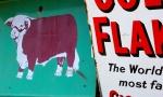 Cows & Cigareetes