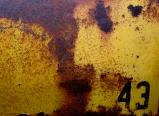 Auction 83 Sm